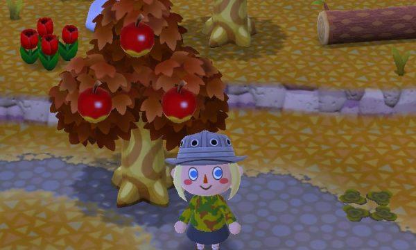 ポケ森攻略:地面と木の葉っぱの色が変わった!!冬の季節イベントくるー!?