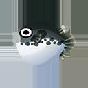 フグ(海でとれる魚):ポケ森攻略