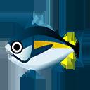 マグロ(海でとれる魚):ポケ森攻略
