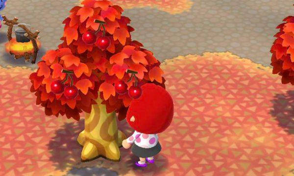 ポケ森攻略:さくらんぼが見つからない!?紅葉に同化し過ぎててワロタwwwww
