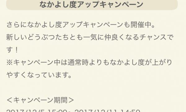 ポケ森攻略:なかよし度アップキャンペーンきたあああ!!!上限に注意!オブジェを作ろうー!